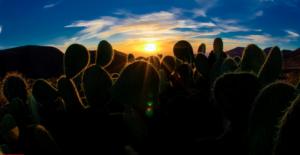 REAL DE CATORCE. Un pueblo mágico en medio del desierto