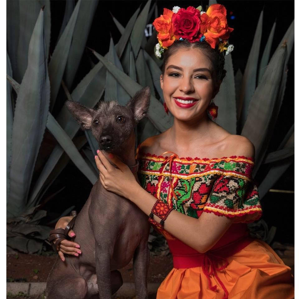 Ericka Carmona, Mitotiani, Xoloescuincle, Zinacantán, bordado Mexicano, handmade